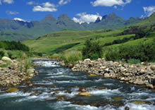 Scenic Stream in the Drakensberg